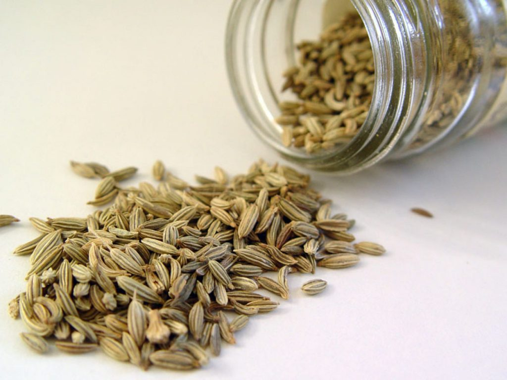 تاثیر عصاره ی گیاه رازیانه بر علایم سندروم پیش از قاعدگی